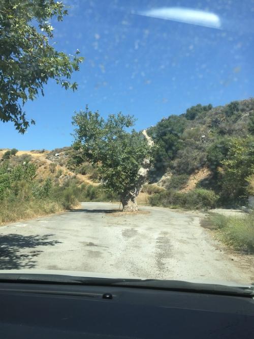 Route Spili Agia Galini