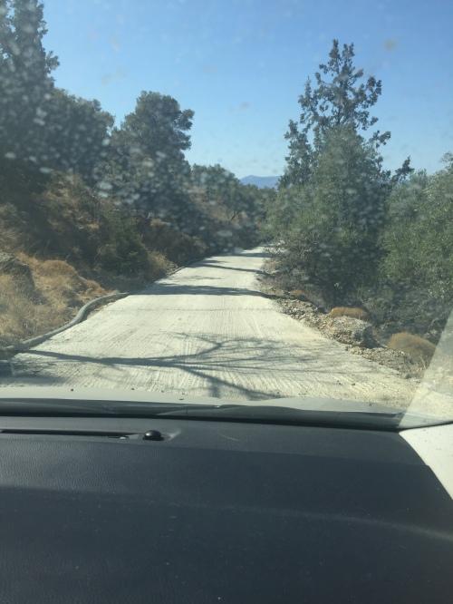 Route vers l'olivier de Kavousi, Crète.